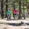 Cycling associations throw support behind Icefields Trail