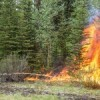 Prescribed burns planned near east gate
