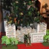 16th annual Festival of Trees begins
