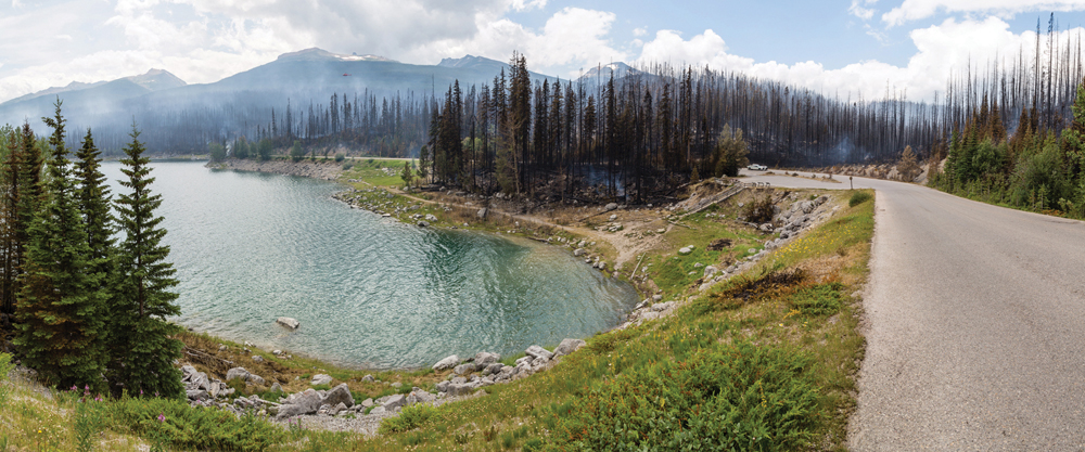 JasperNP-Panorama Viewpoint-Credit-Parks Canada-Rogier Gruys crop