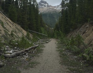 A proposed trail from Jasper to the Columbia Icefields will cost an extra $20.5 million. The proposed trail will use parts of the old paved highway such as this. D. Regett photo.