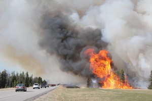 Parks Canada successfully carried out the Jackladder prescribed burn near the Jasper Airfield in April 2016. P. Clarke photo.