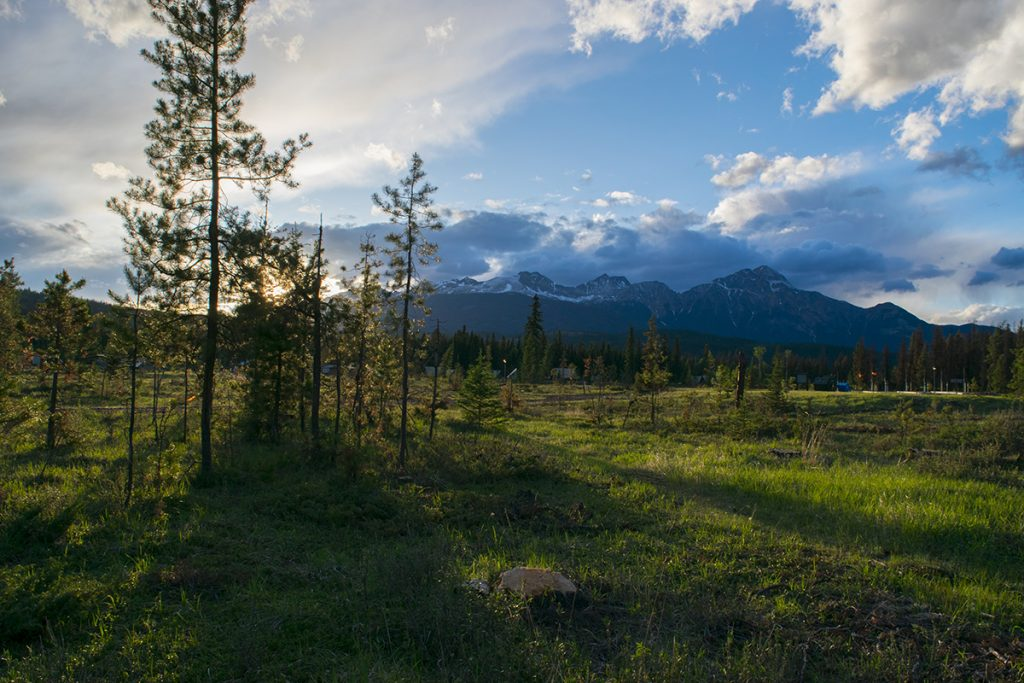 Edmonton's PCL wins Jasper National Park Whistlers rebuild